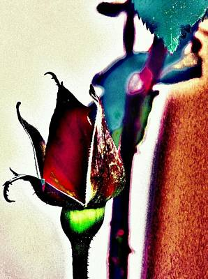 Photograph - Artful Bud by Faith Williams