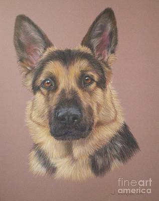 Pastel - Arthur - German Shepherd by Joanne Simpson