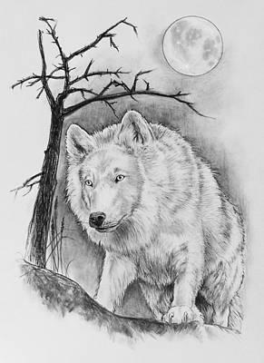 Artic Wolf Print by Bernadett Kovacs