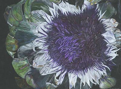 Artichoke Drawing - Artichoke Blossom by Cy Borbone