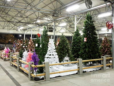Photograph - Artificial Christmas Trees For Sale by Renee Trenholm