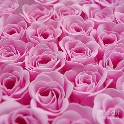 Artificial Pink Roses Print by Bernard Jaubert