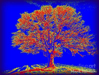 Digital Art - Artist Tree 14 by Mark Herman