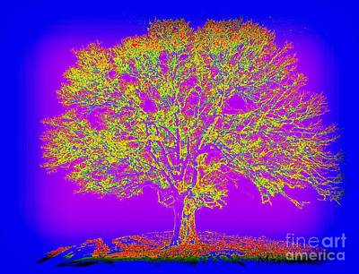 Digital Art - Artist Tree 18 by Mark Herman