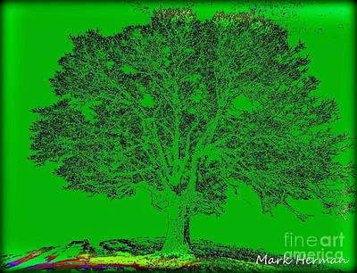 Digital Art - Artist Tree Rainbow by Mark Herman