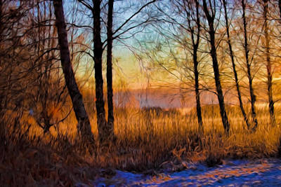 Digital Art - Artistic January Light 2015 A Weak Sun Lightening The Winter Landscape. by Leif Sohlman