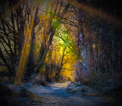 Pathway Digital Art - Artistic Paintiry Afternoon Sunlight On Pathway Along Enkoping Creek About 2 Pm December 28  2014 by Leif Sohlman