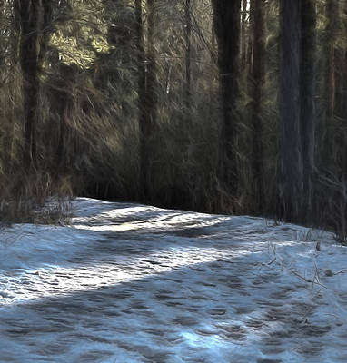 Pathway Digital Art - Artistic Panterly #danger #icy #pathway In Forest by Leif Sohlman