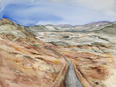 Salt Flats Painting - Artists Drive by Lynne Bolwell