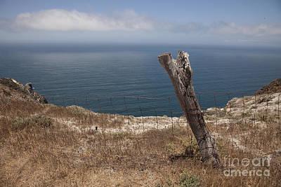 Santa Cruz Island Photograph - Artist's Retreat by Amanda Barcon