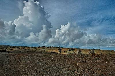 Photograph - Aruba Landscape 1 by Steven Richman