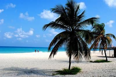 Photograph - Aruba Paradise Beach by Ron Bartels
