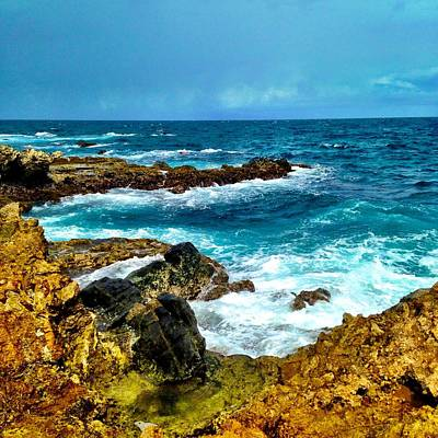 One Photograph - Aruba Paradise by Krista Feierabend