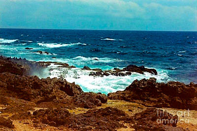 Photograph - Aruba's Wild Side by Anita Lewis
