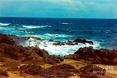 Photograph - Aruba's Wild Side by Anita Lewis