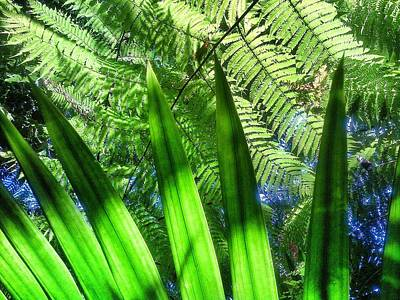 Yunque Digital Art - As Green As It Gets by Olivier Calas