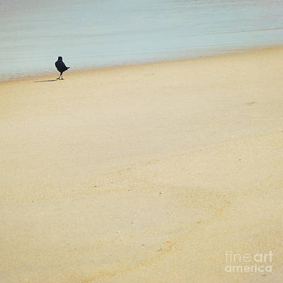 As I Wander Art Print by Sharon Coty