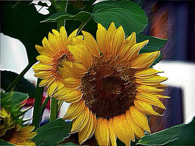 Manipulation Photograph - As Simple As A Sunflower by EricaMaxine  Price