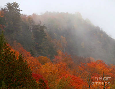 As The Fog Rolls In Art Print by Steven Valkenberg