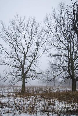 Photograph - As Winter Fades by Deborah Smolinske