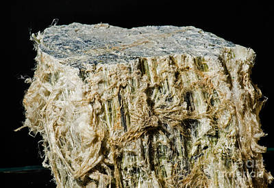 Fibrous Crystals Photograph - Asbestos by Millard H. Sharp