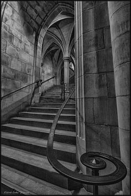 Photograph - Ascending From The Crypt by Erika Fawcett