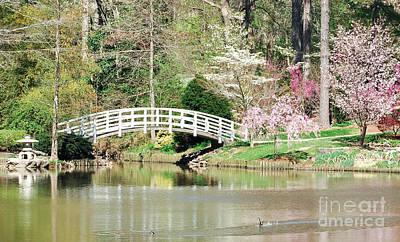 Duck Photograph - Asian Garden by Lee Wilson