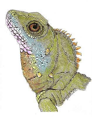 Drawing - Asian Water Dragon by Richard Brooks