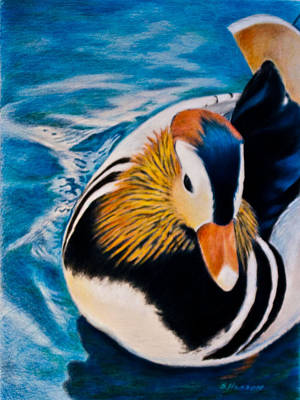 Painting - Mandarin Wood Duck by Sue Henson