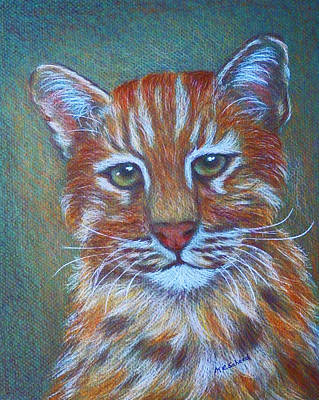 Painting - Asiatic Golden Cat by Margaret Saheed