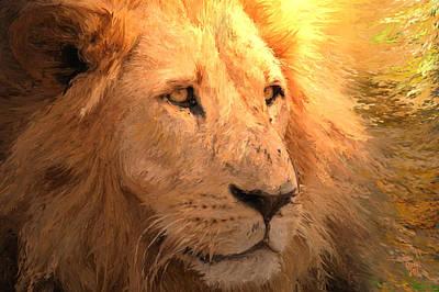 Asiatic Lion Art Print by Shubnum Gill