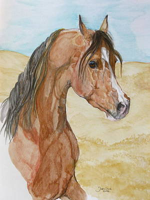 Suuronen Drawing - Asileh by Janina  Suuronen