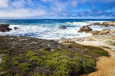 Pacific Grove Photograph - Asilomar State Beach by Priya Ghose