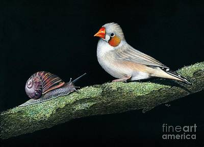 Finch Mixed Media - Asking For Directions by Karen Hull