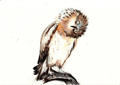 Asking Owl Watercolor Art Print by Tiberiu Soos