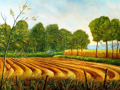 Asparagus Painting - Asparagus Cultivation  by Andries Hartholt