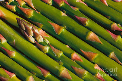 Asparagus Digital Art - Asparagus by Jerry Fornarotto