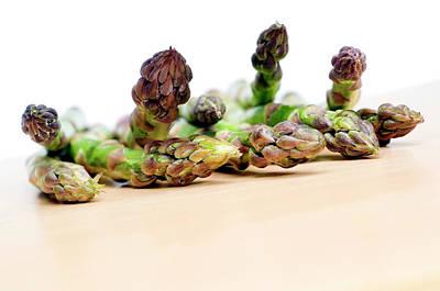 Asparagus Wall Art - Photograph - Asparagus Spears by Daniel Sambraus/science Photo Library