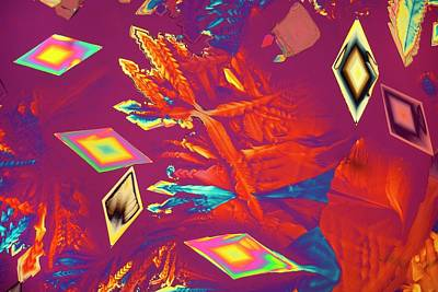 Crystalline Photograph - Aspartic Acid Crystals by Steve Lowry