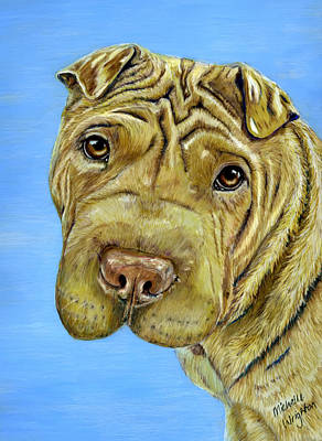 Painting - Beautiful Shar-pei Dog Portrait by Michelle Wrighton