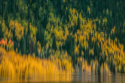 Art Print featuring the photograph Aspen Abstract by Ken Smith