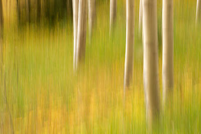 Aspen Abstract Art Print by Ronda Kimbrow