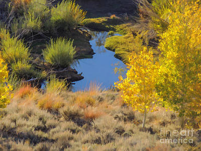Aspen And Beaver Channel Art Print by L J Oakes