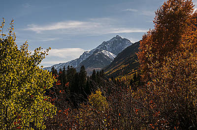 Photograph - Aspen And Mountains 1 by Lee Kirchhevel