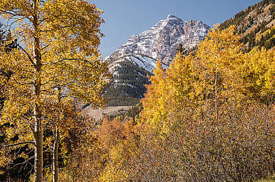 Photograph - Aspen And Mountains 5 by Lee Kirchhevel