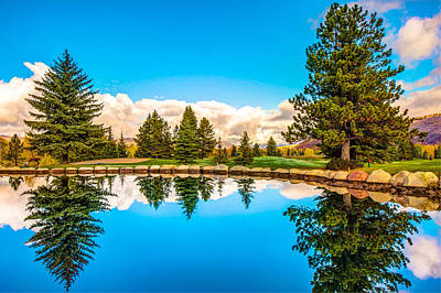 Town Lake Park Photograph - Aspen - Bold And Beautiful by Gregory Ballos