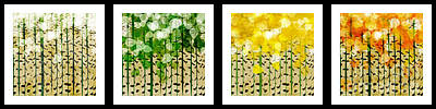 Digital Art - Aspen Colorado Abstract Horizontal 4 In 1 Collection by Andee Design