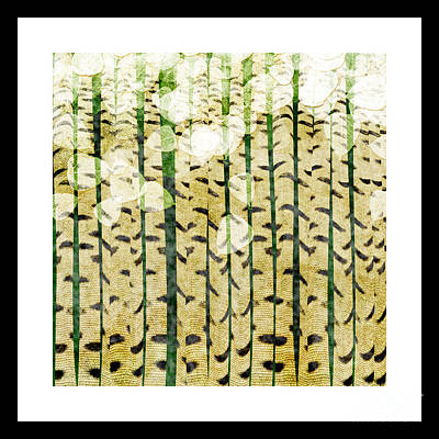 Andee Design White Digital Art - Aspen Colorado Abstract Square 3 by Andee Design