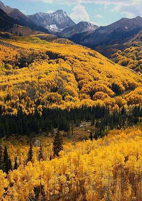 Aspen Photograph - Aspen Fall At Capitol Creek by Jetson Nguyen
