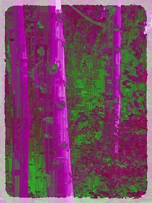 Digital Art - Aspen Grove 4 by Tim Allen